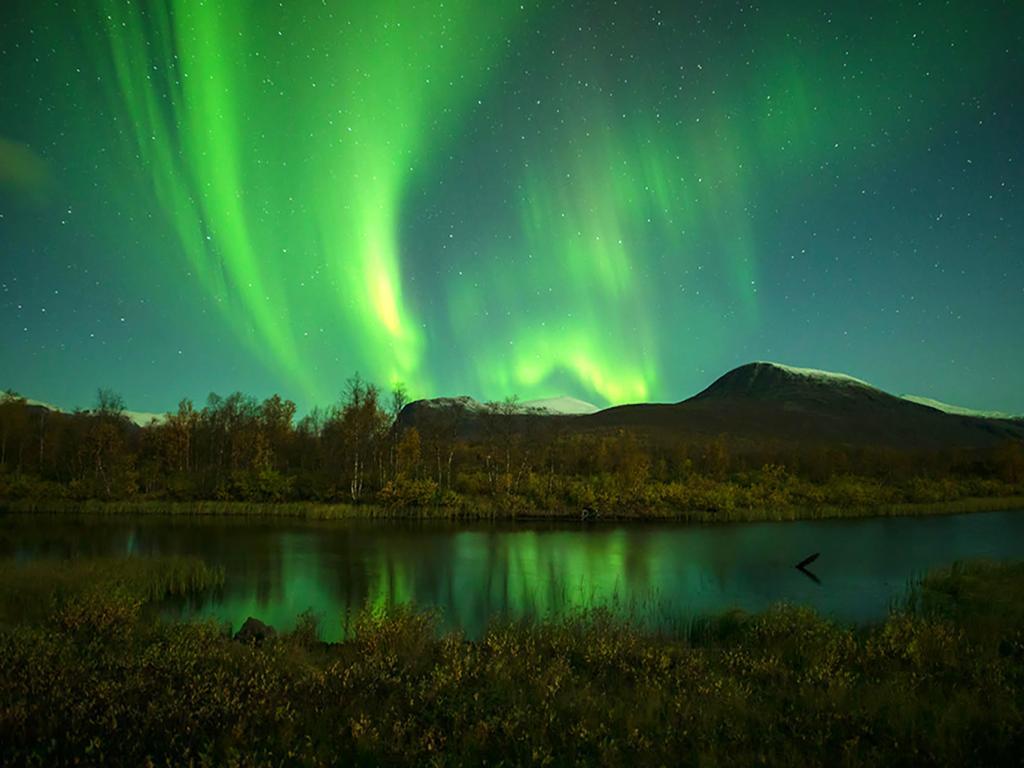 Naturfoto, Foto: Christer Svedmark