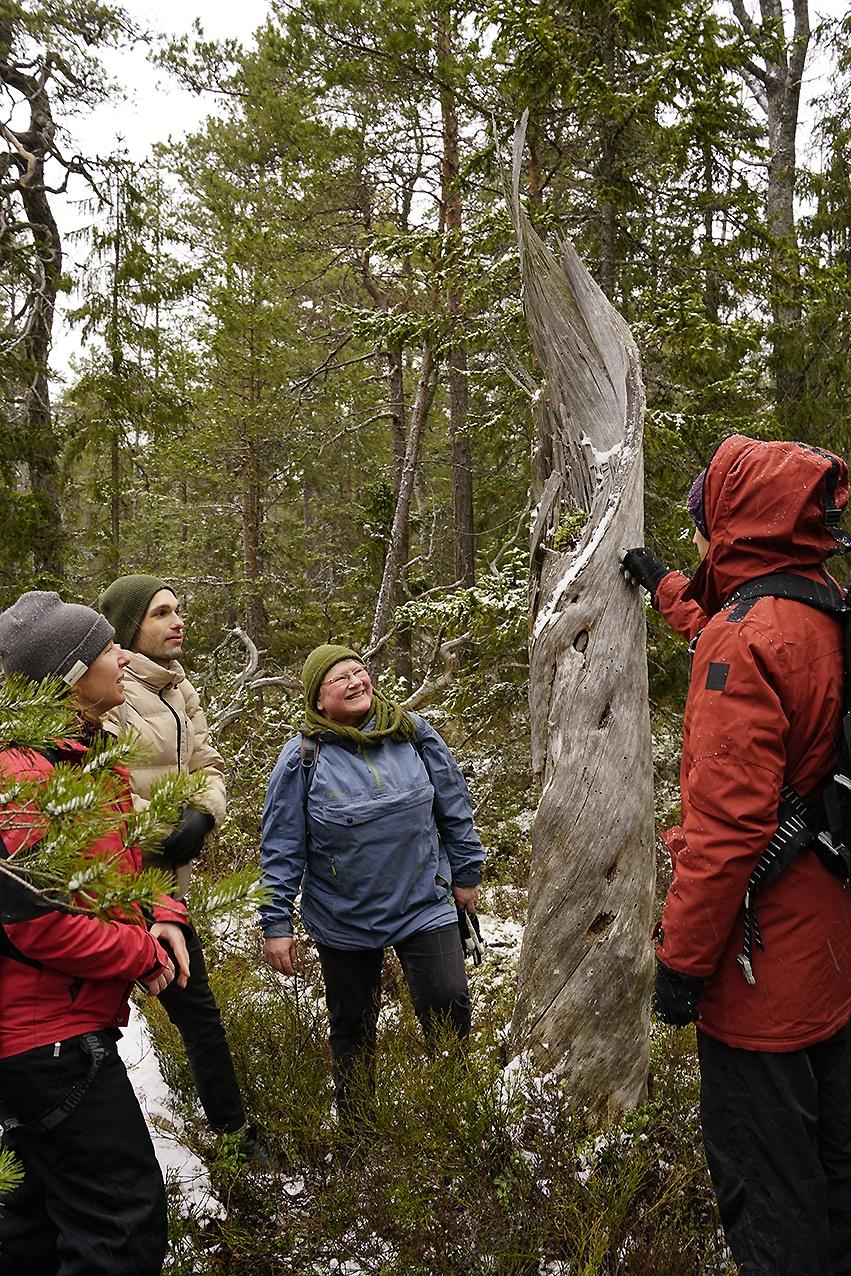 En grupp studerande i friluftskläder ute i skogen, Fotograf: Andy Horner